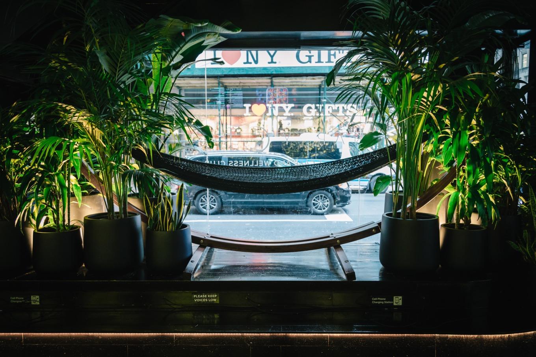 cafe-hammock-Nap-York